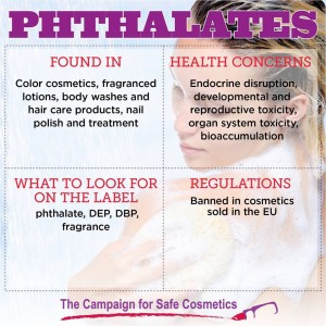 GPB phthalates SC